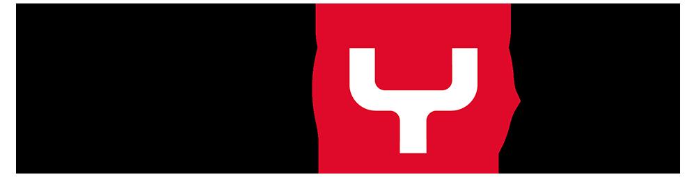 Logo Swyx Solutions GmbH