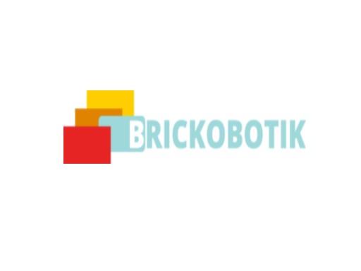 Logo brickobotik OHG